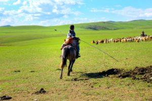 モンゴル人と遊牧生活